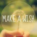 WISH WISH WISH… WHAT DO YOU WISH FOR?