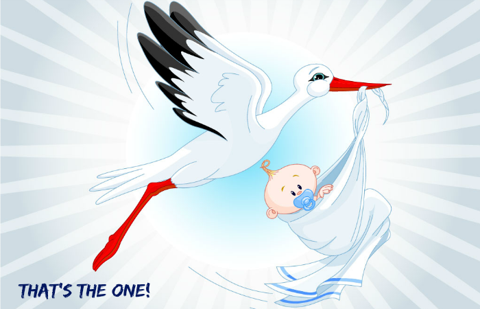 stork-with-baby